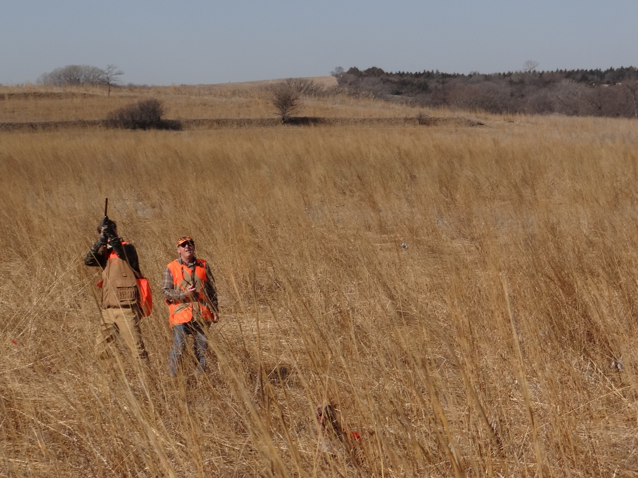 Upland game bird hunting at Oak Creek Sporting Club. Photo by Greg Wagner.