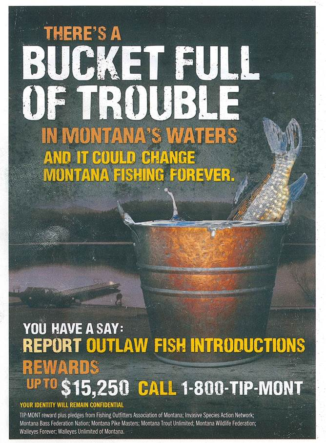 BackCover2017MontanaFishingGuide