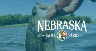 NebraskaFishingGroup