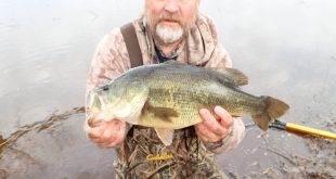 March2019BigLargemouth