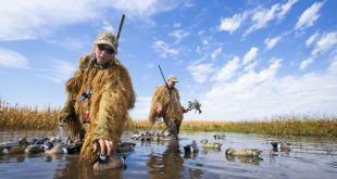 Nebraskaland cover story on teal hunting